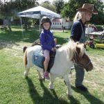 Pony-Mirja