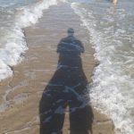 Papa zwischen den Meeren